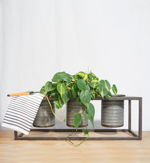 moorland galvanized triple planter