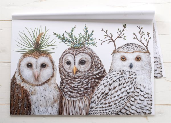 Winter Owls Paper Placemat
